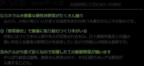 糸島野菜 福岡のブランド野菜