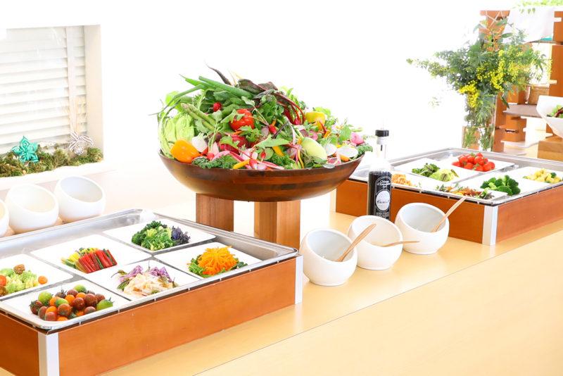 プレジールランチ 糸島野菜たっぷりのサラダバー
