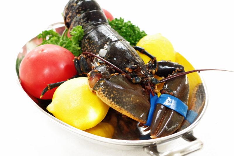 デグパージュ ムニュ クラシック フランス ブルターニュで水揚げされたオマール・ブルーのサラダ